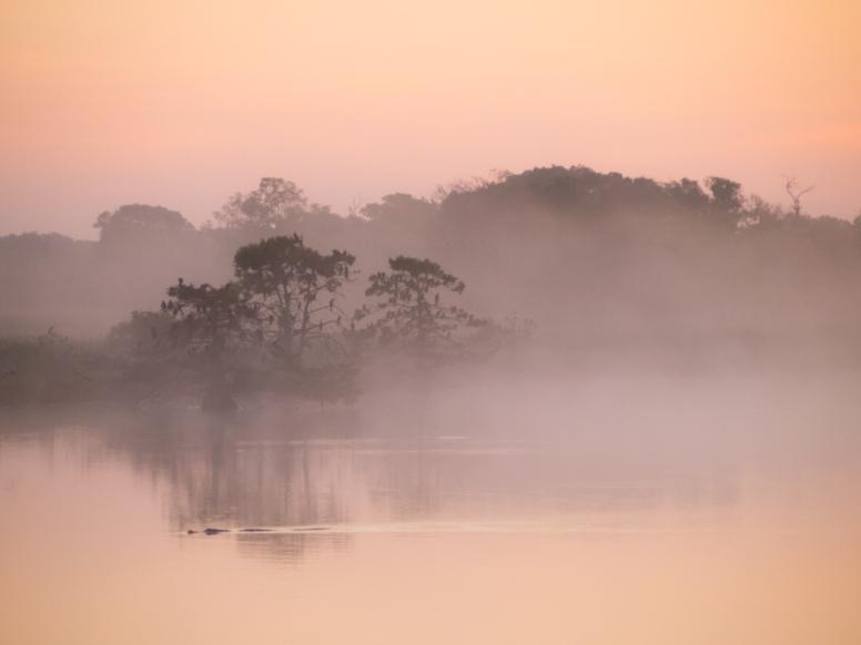 Pre-dawn light over Smithers Lake, southwest of Houston, Texas